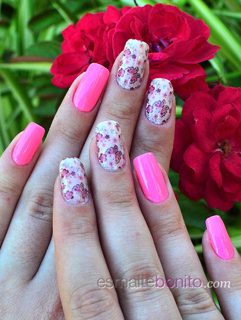 Adesivo de Borboletas e Flores Rosas